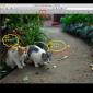 Macのプレビューで画像に文字やセリフを書き込む方法