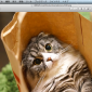 Macで簡単!ファイルをPDFに変換する方法