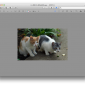 Macのプレビューで画像をトリミング(切り抜き)する方法